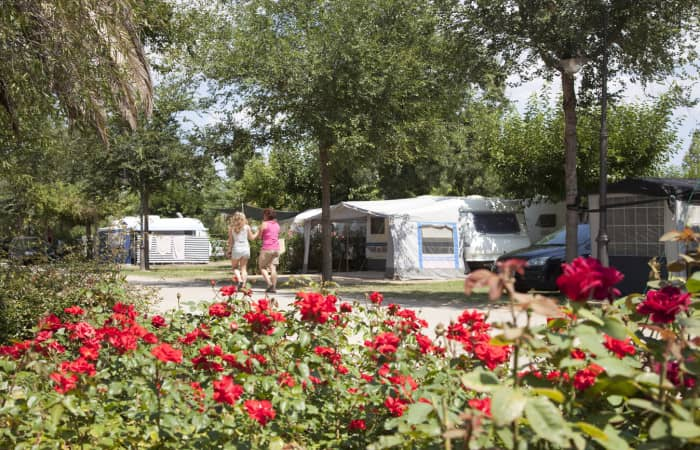 camping_13_parceles